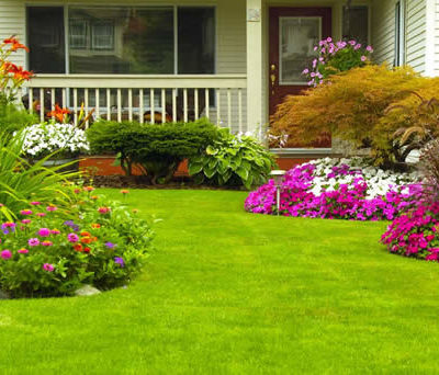Fantastic Home and Garden Tips