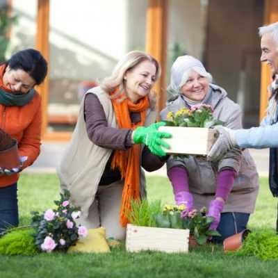 Top 5 Fun Activities for Seniors in Utah