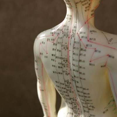 Why Study at the American College of Acupuncture and Oriental Medicine