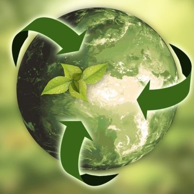 Going Green: The Many Benefits of Sustainability for Businesses