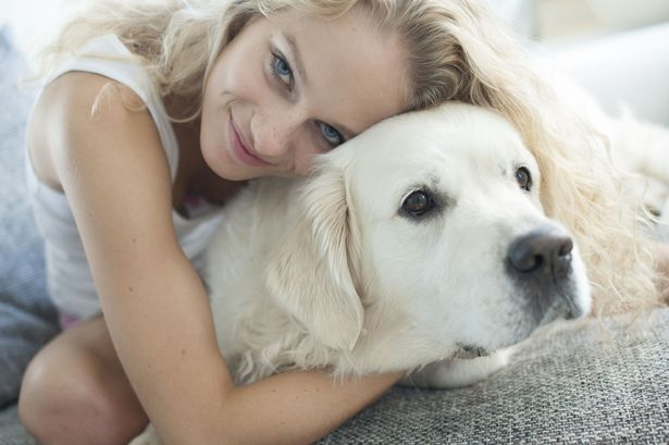 The Ultimate Dog Care Checklist For Busy Moms