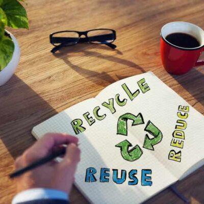 Going Green: What Happens When Workplaces Focus on Sustainability